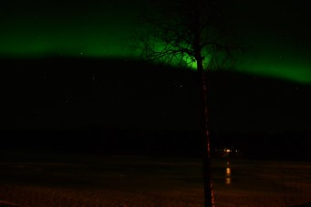 northern-lights-auktsjaur