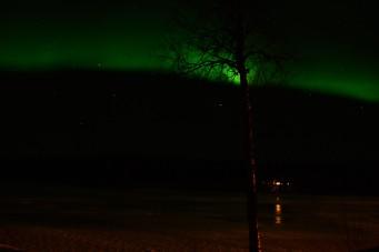 northern-lights-auktsjaur